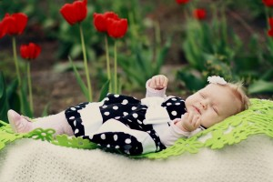 Baby Wallpapers roses