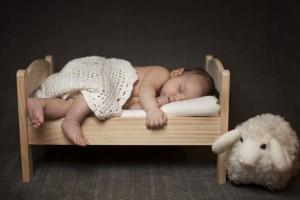 Baby Wallpapers sheep