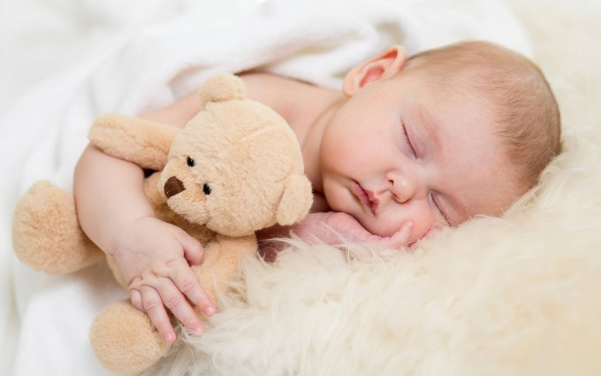 Baby Wallpapers teddy bear
