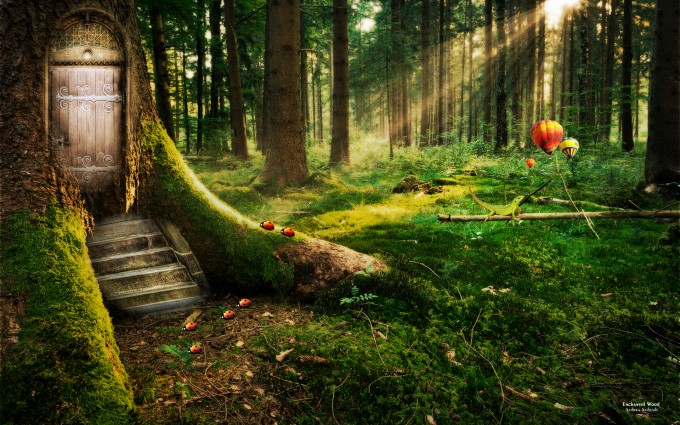 Forest Wallpapers HD fantasy tree house