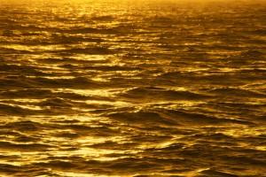 Gold Wallpapers ocean