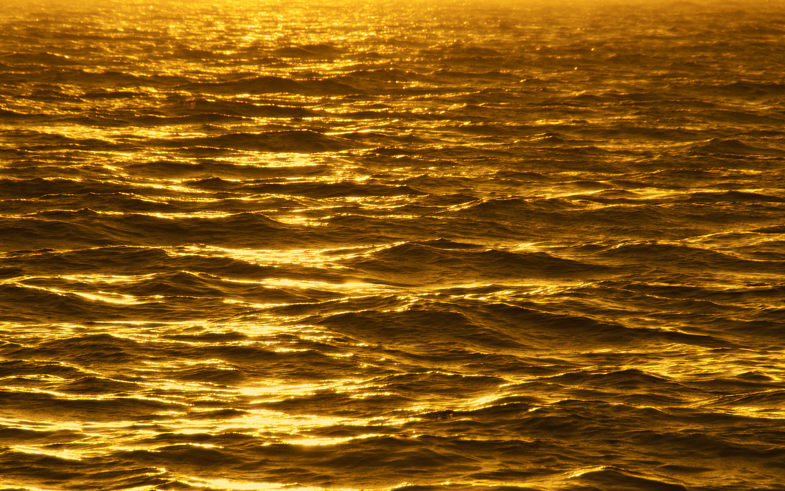 Gold Wallpapers ocean