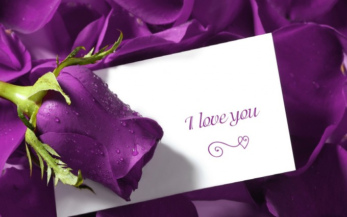 I Love You Wallpapers HD A25