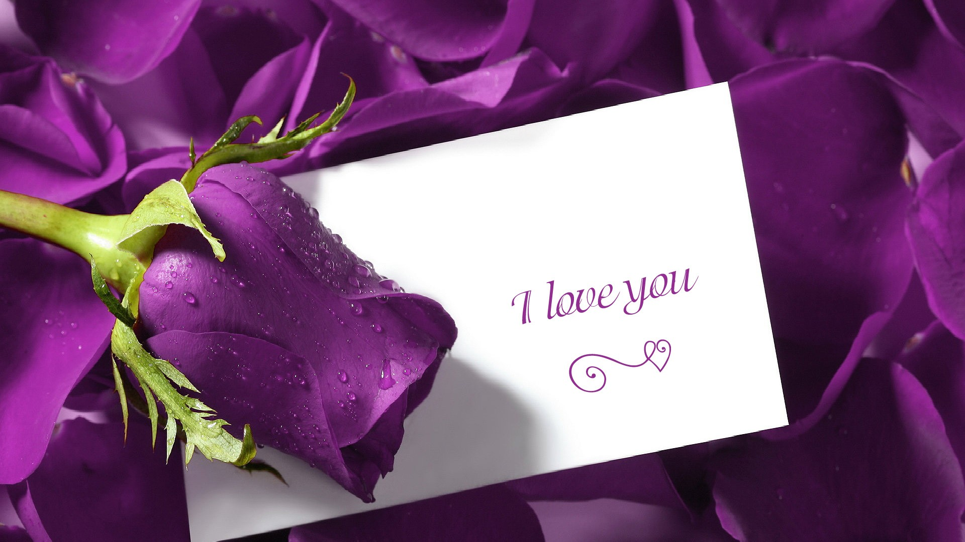i love you wallpapers hd a25 hd desktop wallpapers