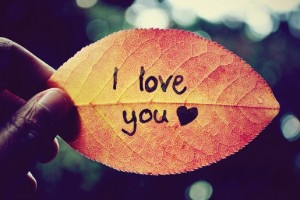 I Love You Wallpapers leaf