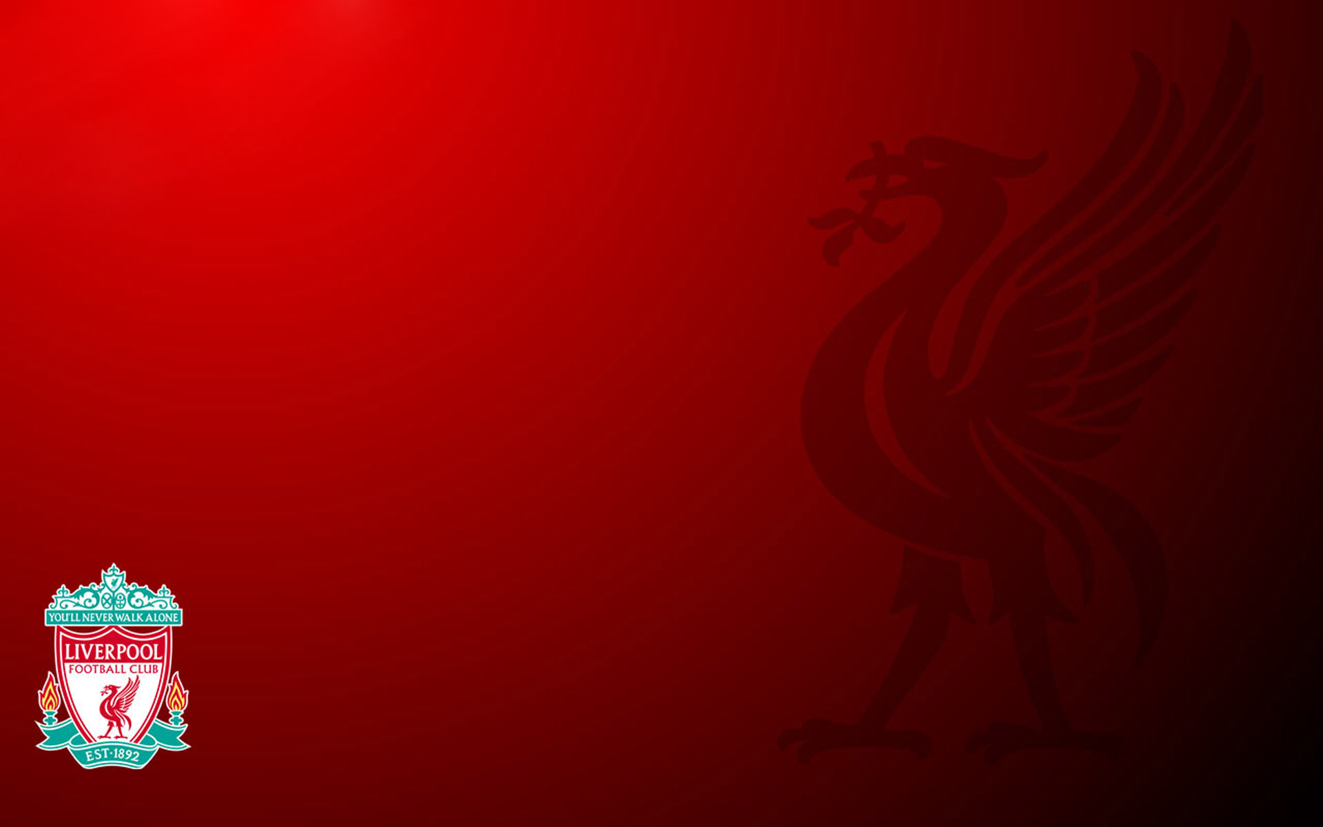 Liverpool Wallpapers HD bird