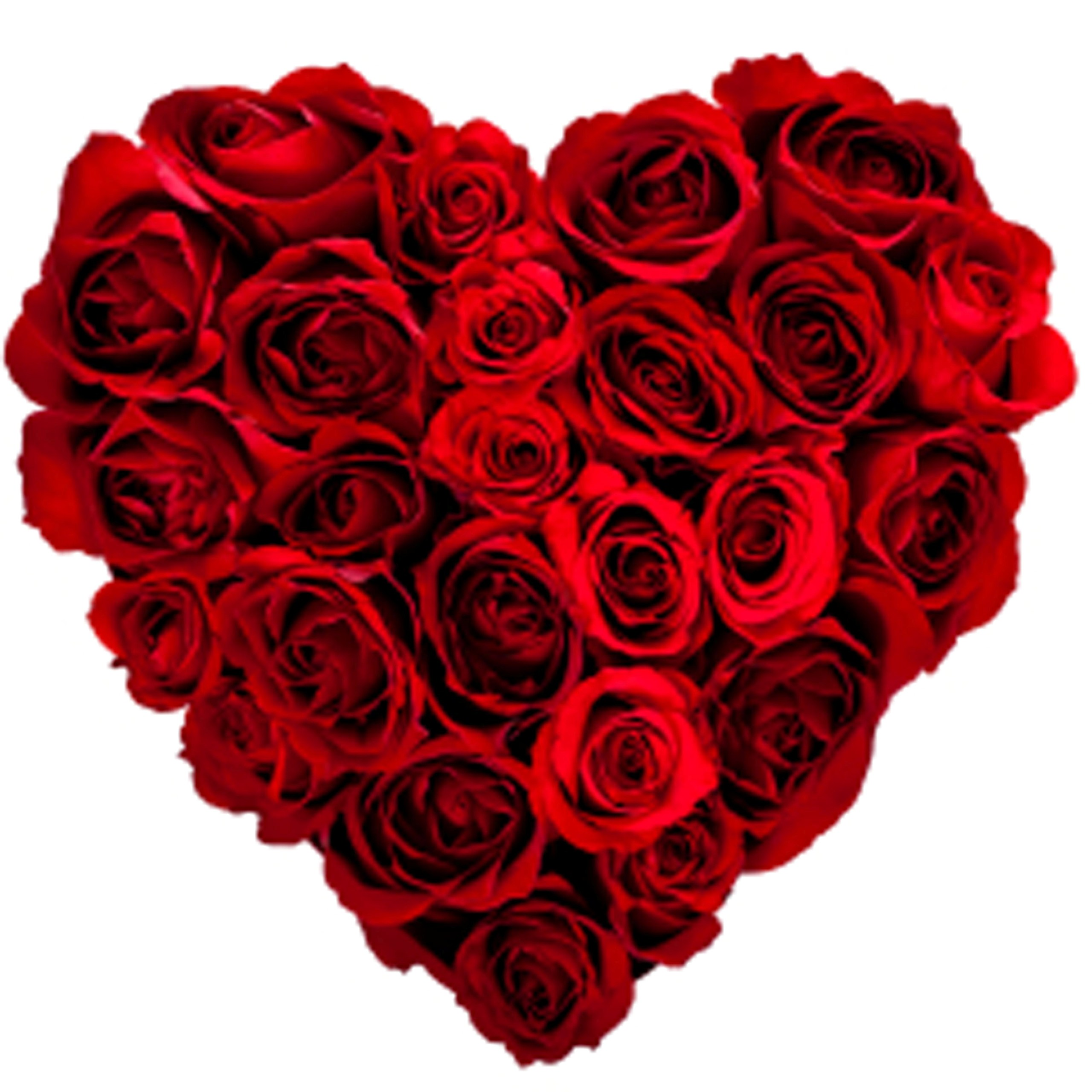 Red Roses Wallpapers HD A39 heart shape