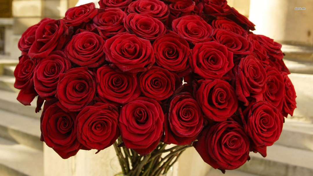 Red roses wallpapers hd a19 hd desktop wallpapers 4k hd - Bunch of roses hd images ...