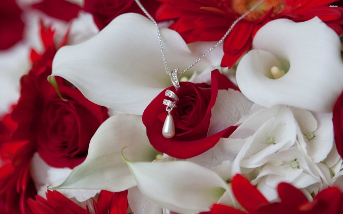Red Roses Wallpapers HD A39 necklace