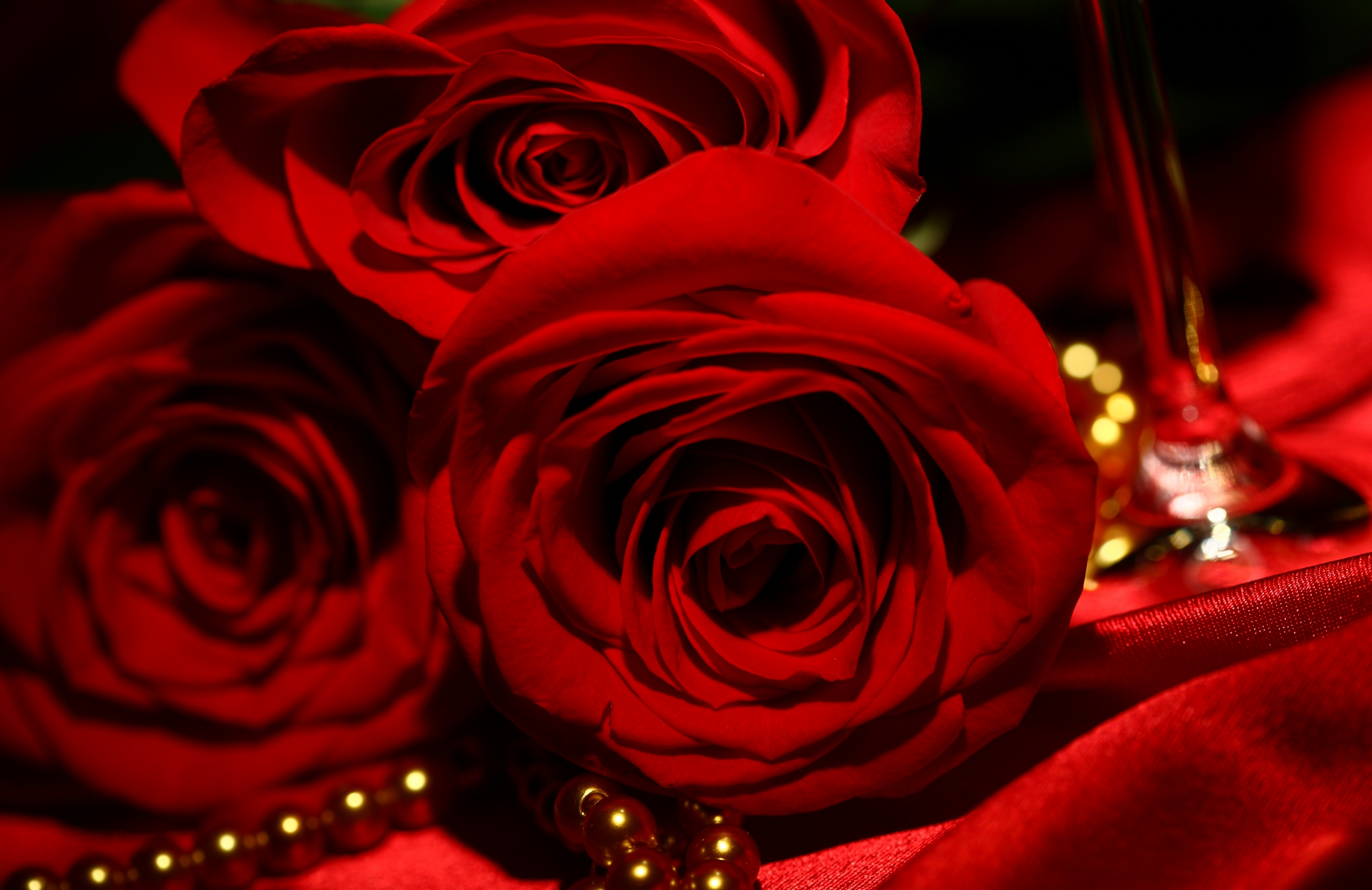Red Roses Wallpapers HD A39 beads