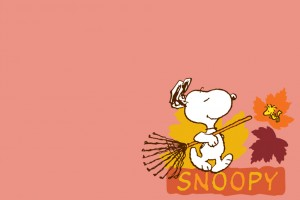 Snoopy Wallpapers HD cleaning