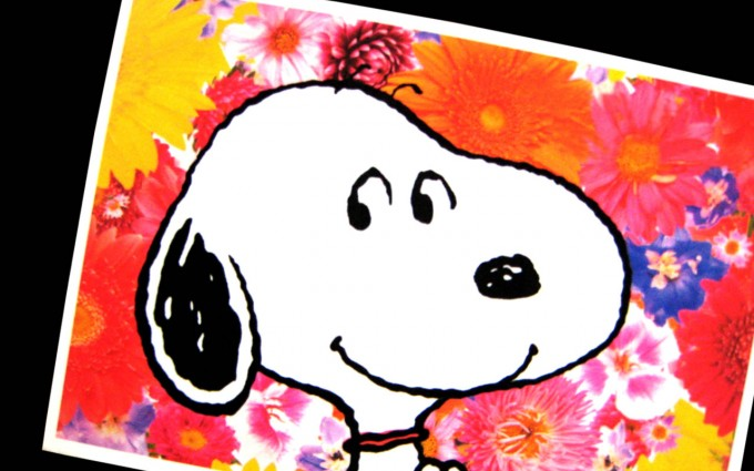 Snoopy Wallpapers HD photoframe