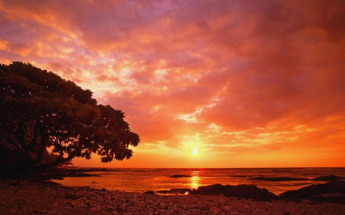 tropical sunset wallpaper HD2