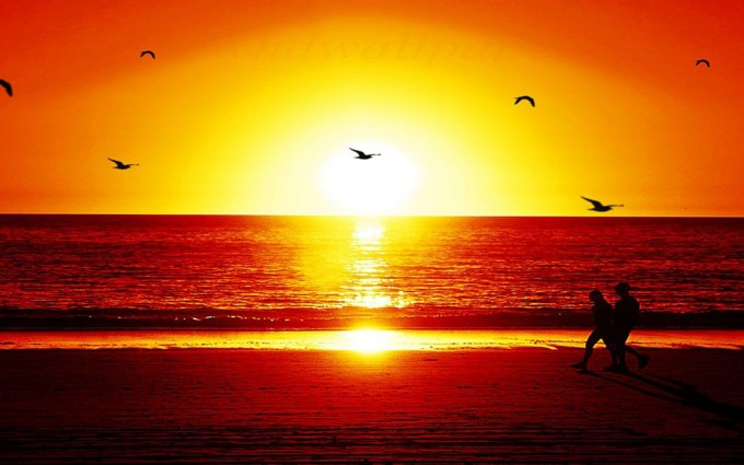 romantic sunset wallpapers couples