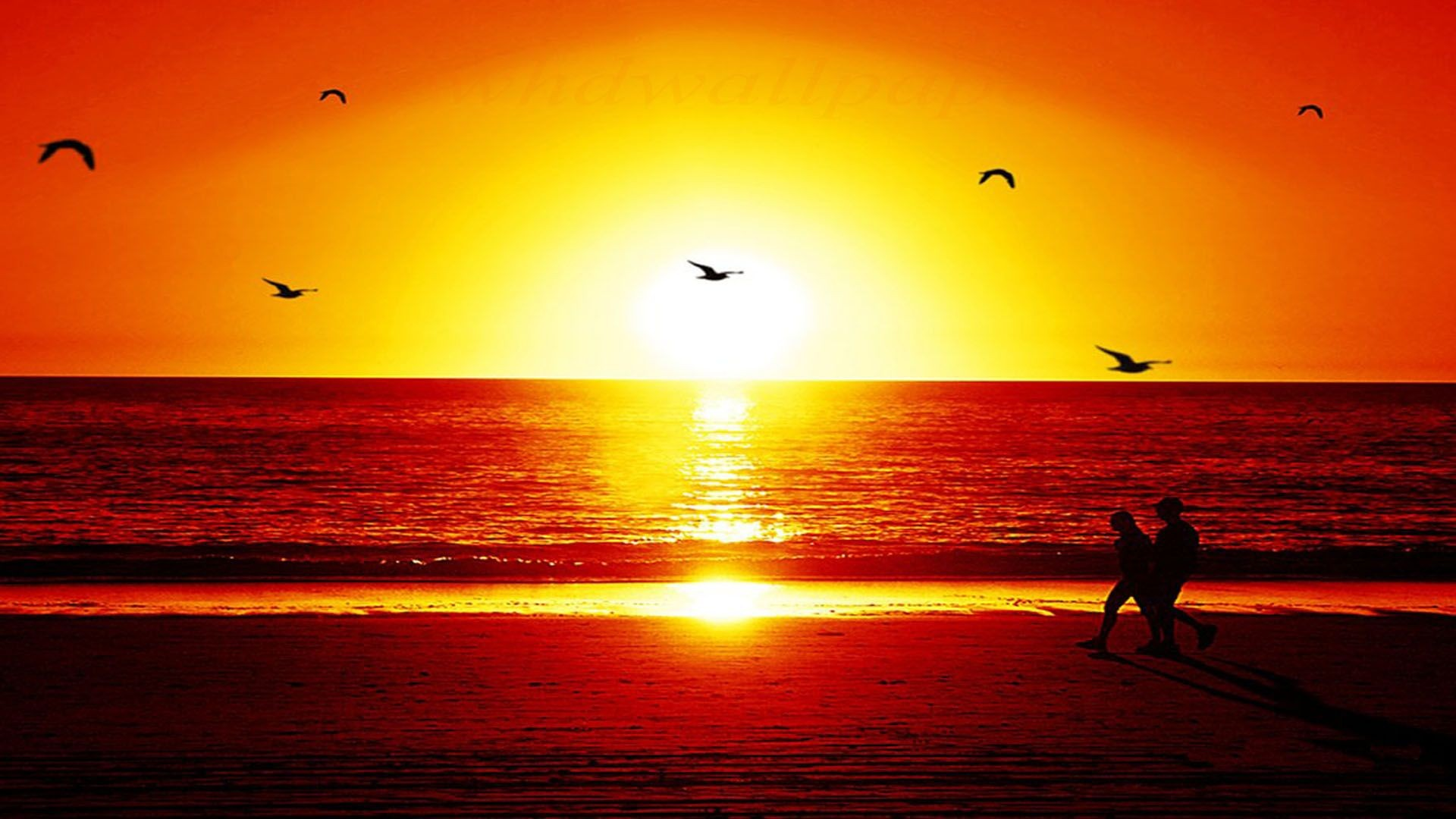 Orange Sunset Wallpapers Wallpaper Studio  Tens of thousands