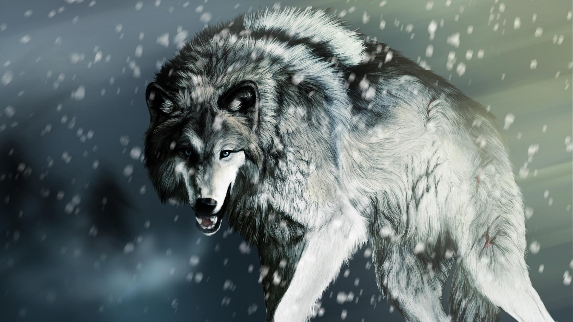 wolfs wallpaper
