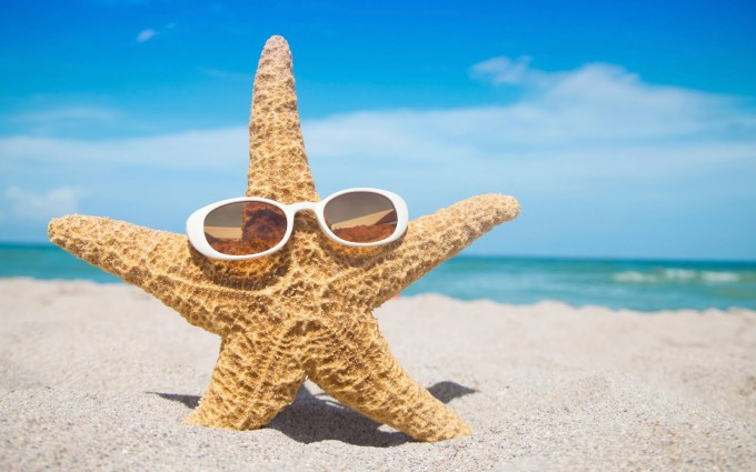 Starfish with sunglasses at a beach in the Miami/Ft. Lauderdale area of Florida