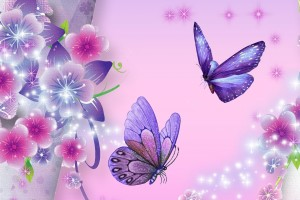 butterfly wallpaper purple star