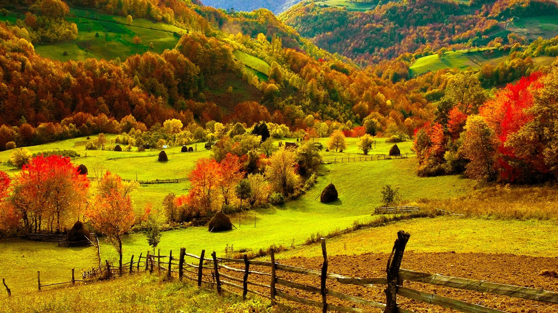 fall wallpapers farm HD Desktop Wallpapers 4k HD