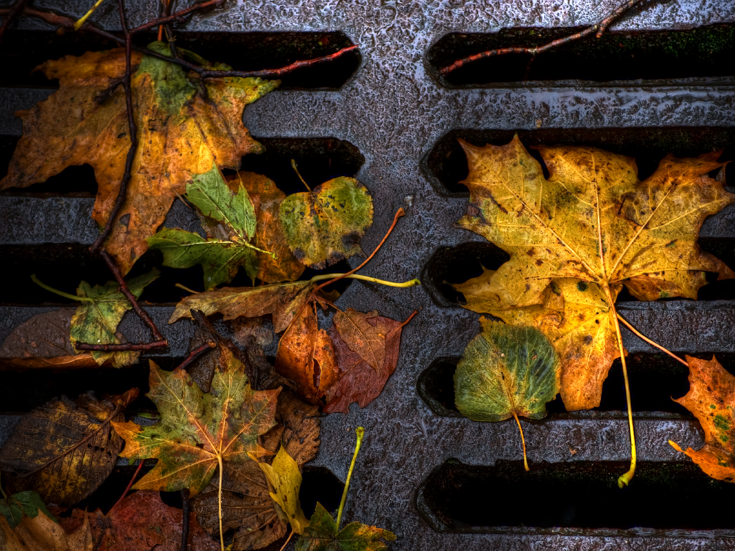 fall wallpapers grill Autumn