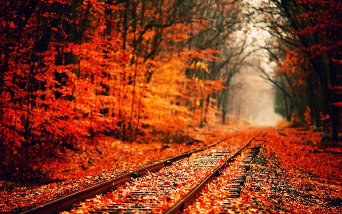fall wallpapers rail track Autumn