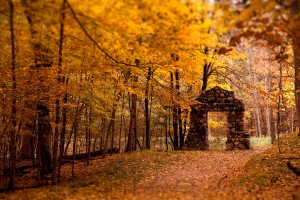 fall wallpapers sweet Autumn