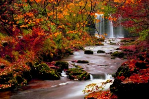 fall wallpapers waterfalls Autumn
