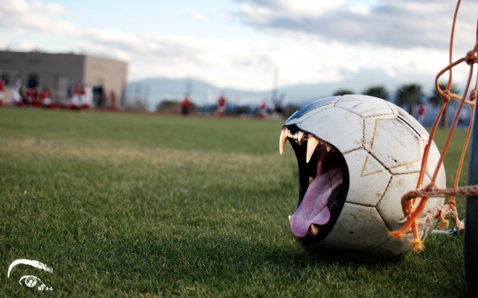 football wallpaper fangs