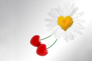 heart wallpapers Daisy Cherry Love