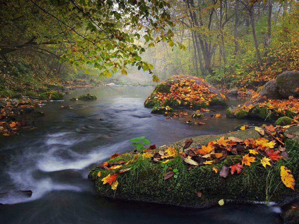 landscape wallpaper autumn