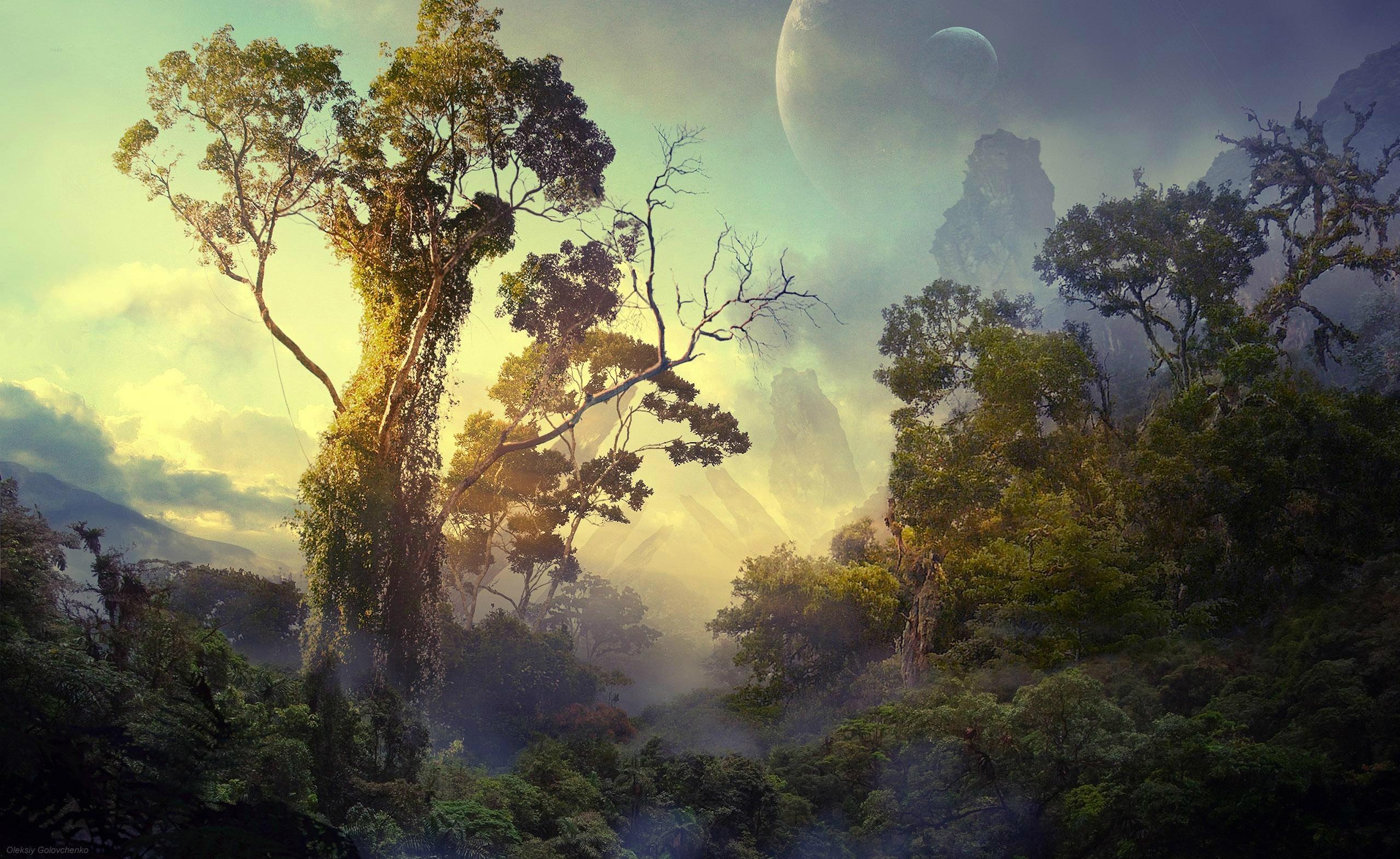 landscape wallpaper trees