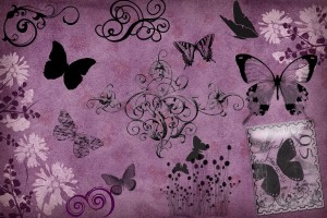 wallpapers of butterfly