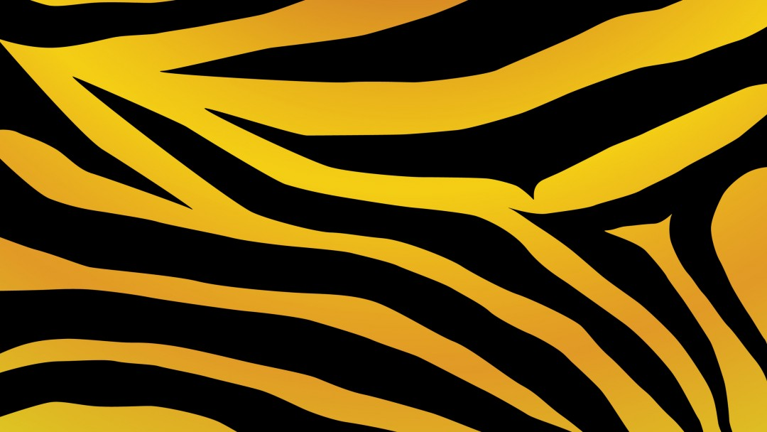 Zebra print wallpaper for iphone