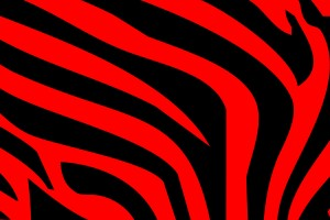 Red zebra print wallpapers