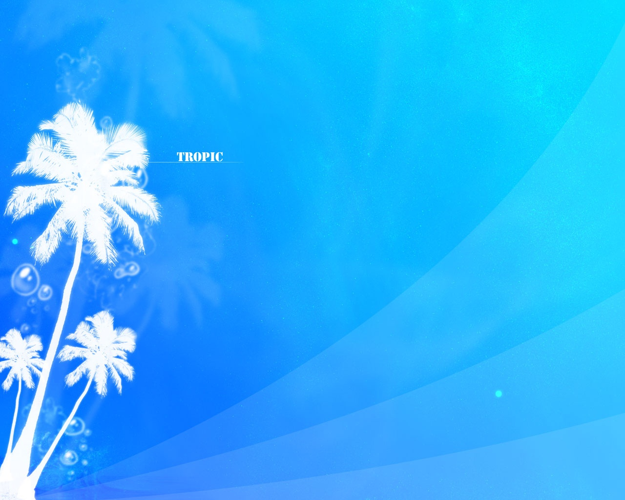 abstract wallpapers hd tropical