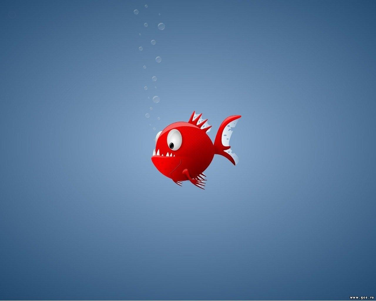 animated fish wallpaper
