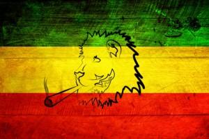 bob marley wallpaper lion