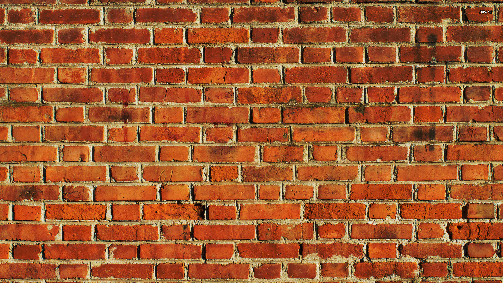 brick wallpaper photography