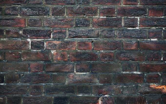 brick wallpaper unique