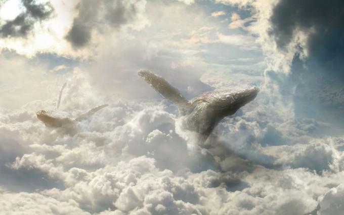 cloud wallpaper splendid