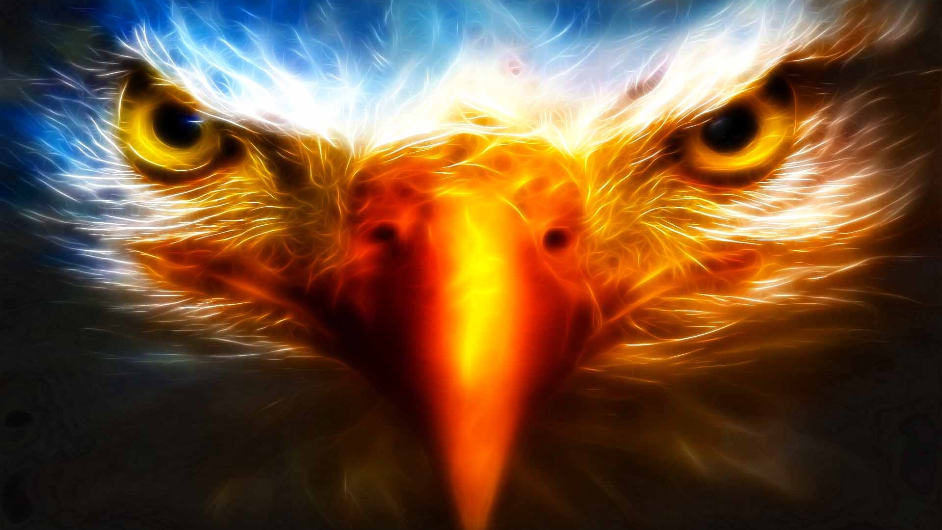 Cool wallpapers eagle hd desktop wallpapers 4k hd cool wallpapers eagle voltagebd Choice Image