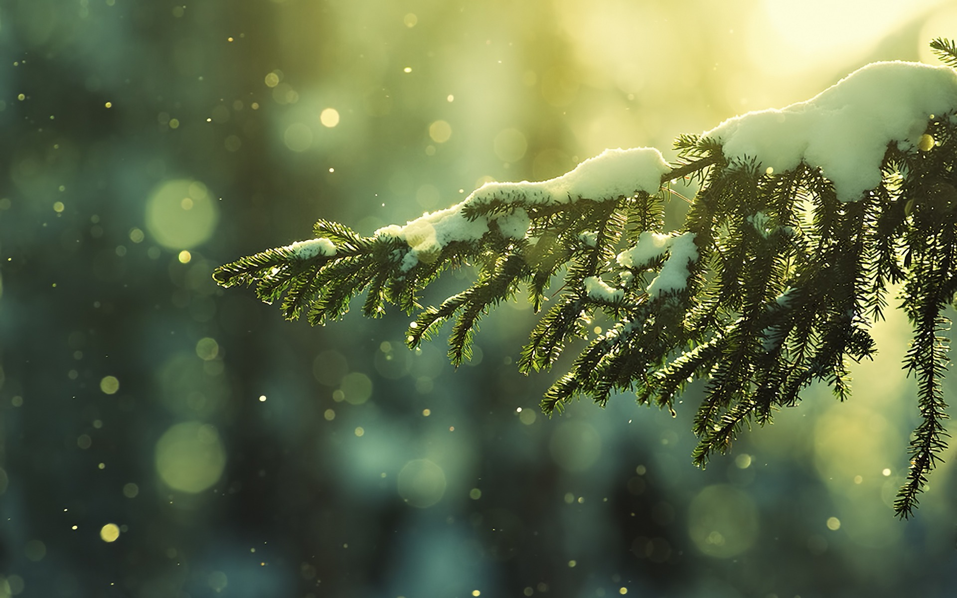 desktop backgrounds winter