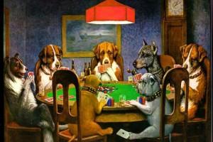 dog wallpaper poker