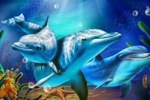 dolphin wallpaper cartoon