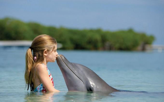 dolphin wallpaper girl