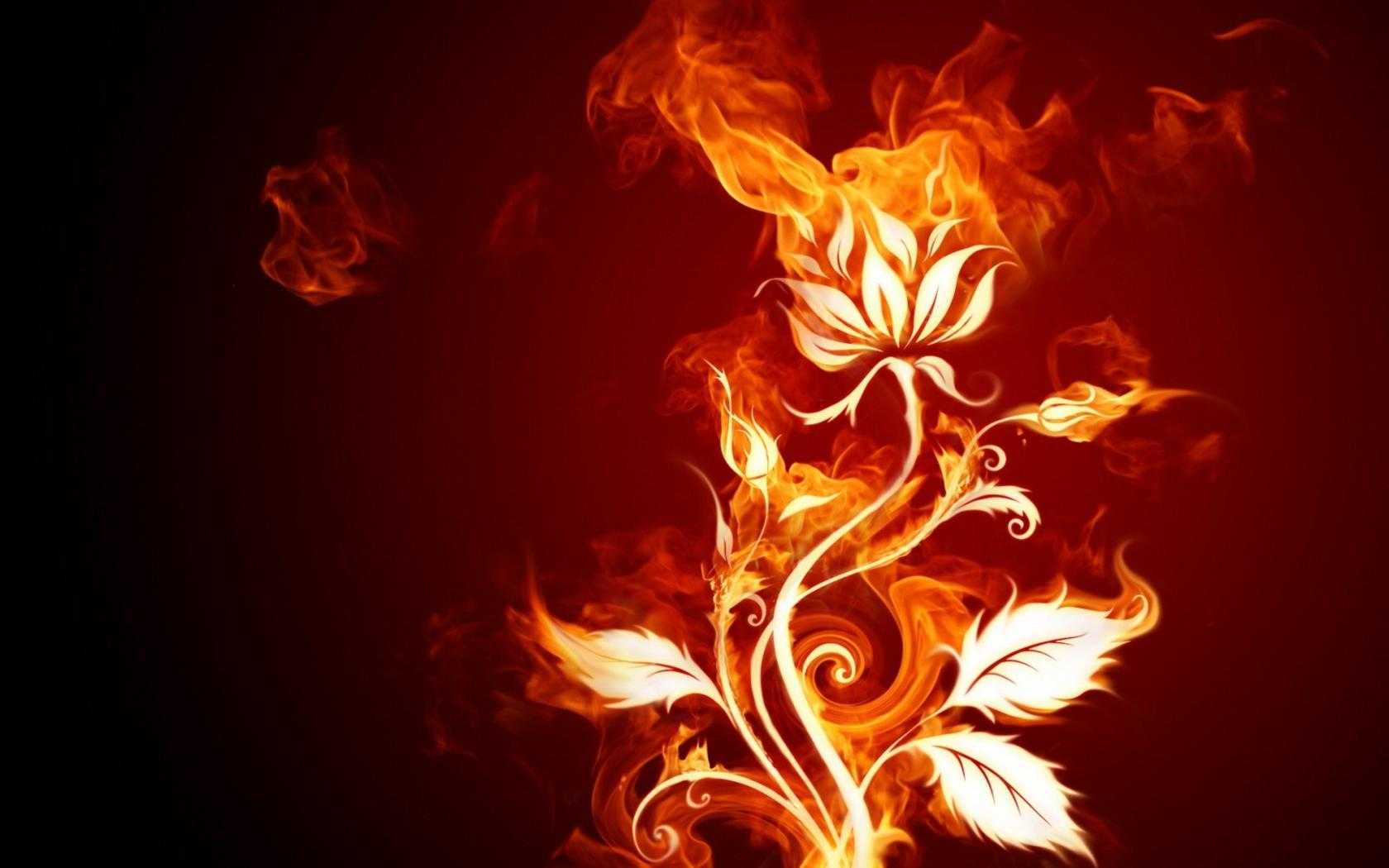 fire wallpaper flower