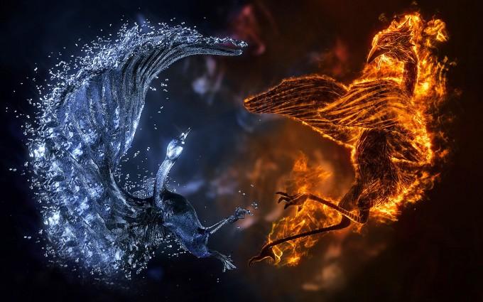 fire wallpaper ice birds