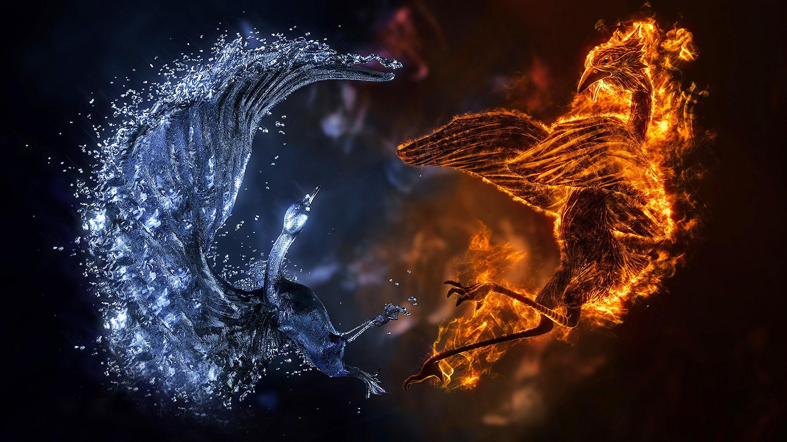 fire wallpaper ice birds