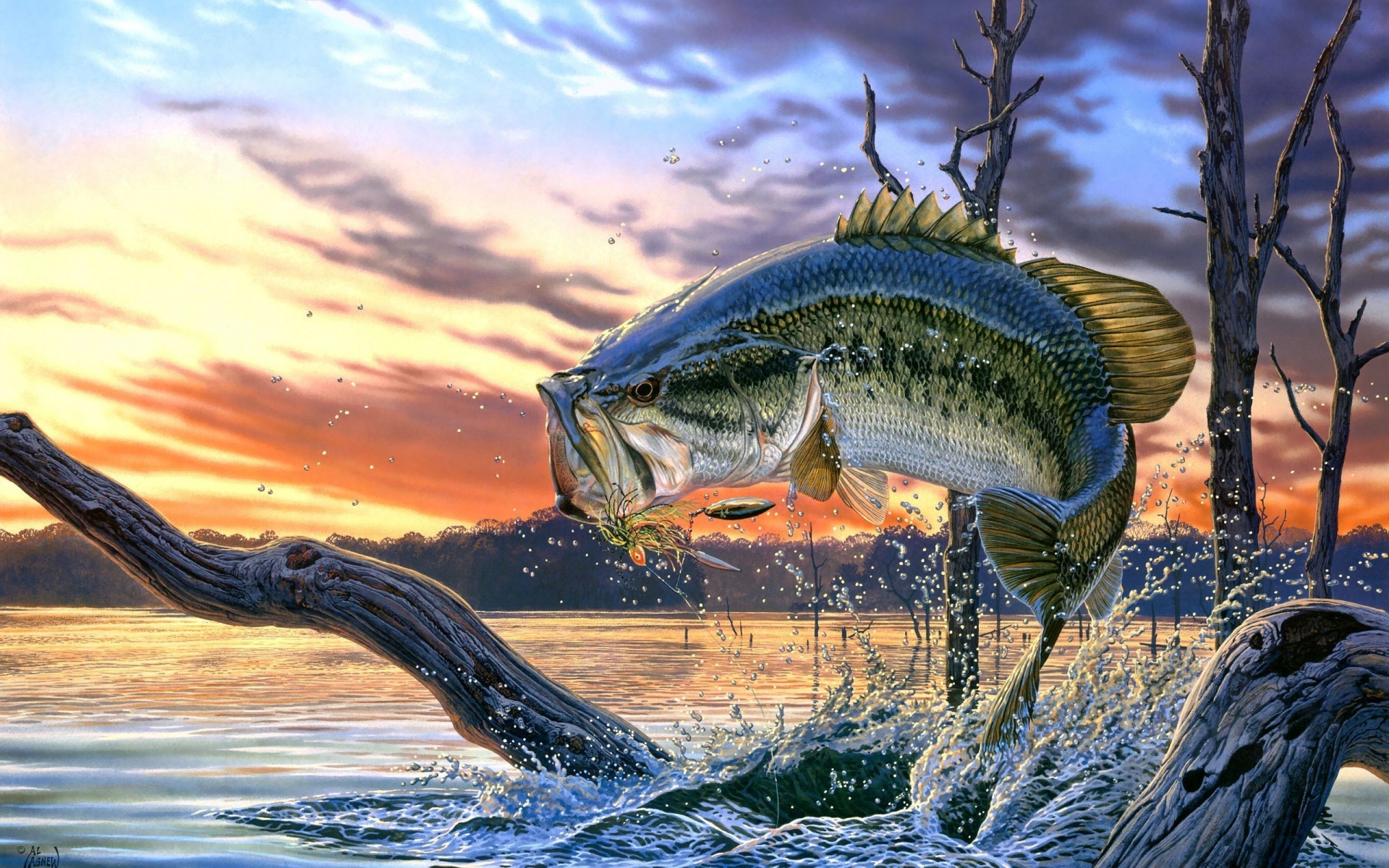 fish wallpaper fantasy