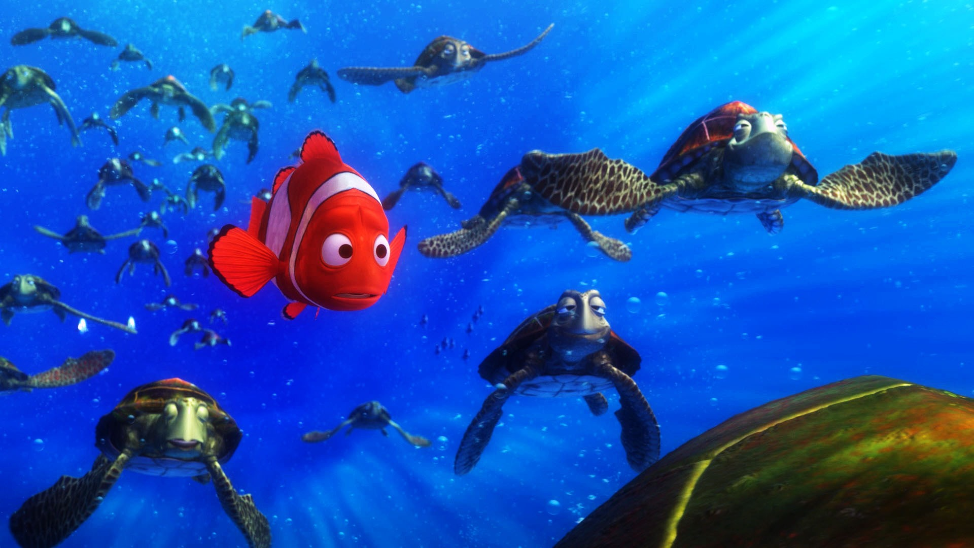 fish wallpaper finding nemo